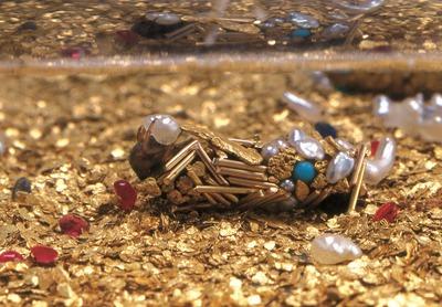 Tubes de larves aquatiques de trichoptères