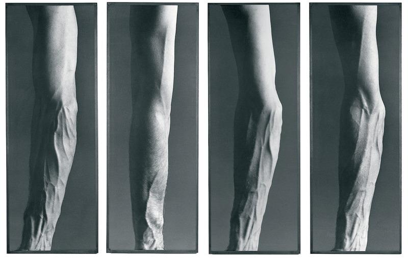 S7 bb veines.large